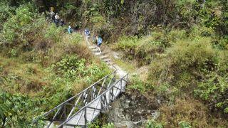 it_trekking_bridge