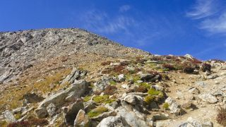 me_more_climbing